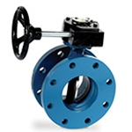 Butterfly Valves: Iron