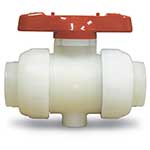 "Asahi/America Type 21 True Union Ball Valve 2"" PVDF/FKM IPS Threaded"