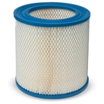 Paper Blower Filter Element, Replacement for Solberg 18