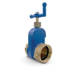 "HD Brass Gate Valve w/ L-Crank Handle, 2.5"" NST (MxF)"